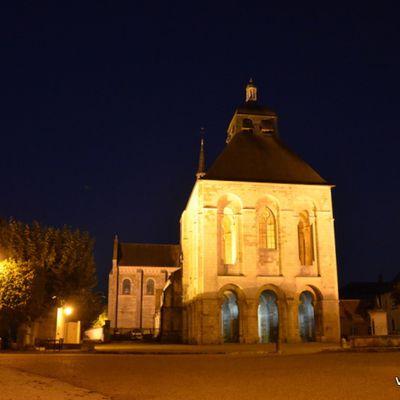 Nocturne à l'abbaye de Fleury (45)