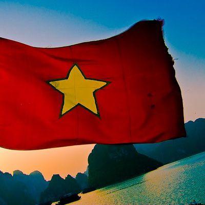 Zigo au Vietnam juillet 2014