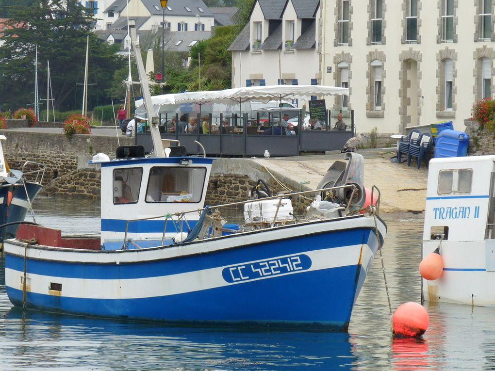 LE P'TIT YOUN  CC 422412 , dans le port de Doelan (Sud Finistère ) le 13 deptembre 2016