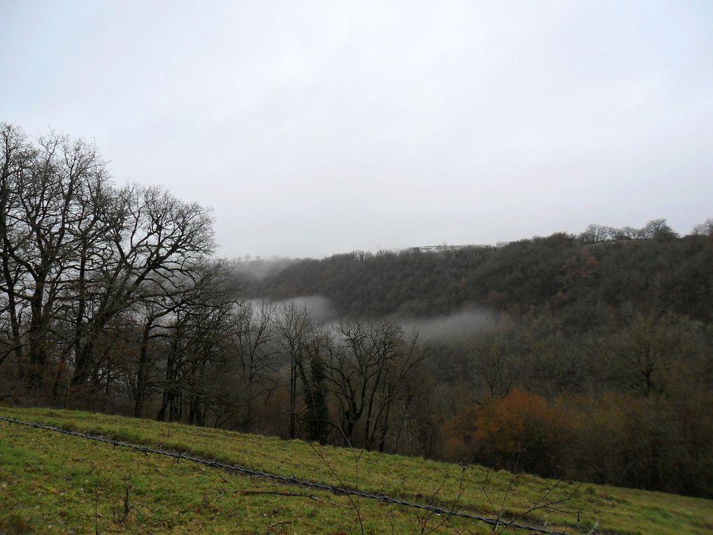 Jeudi dans le brouillard