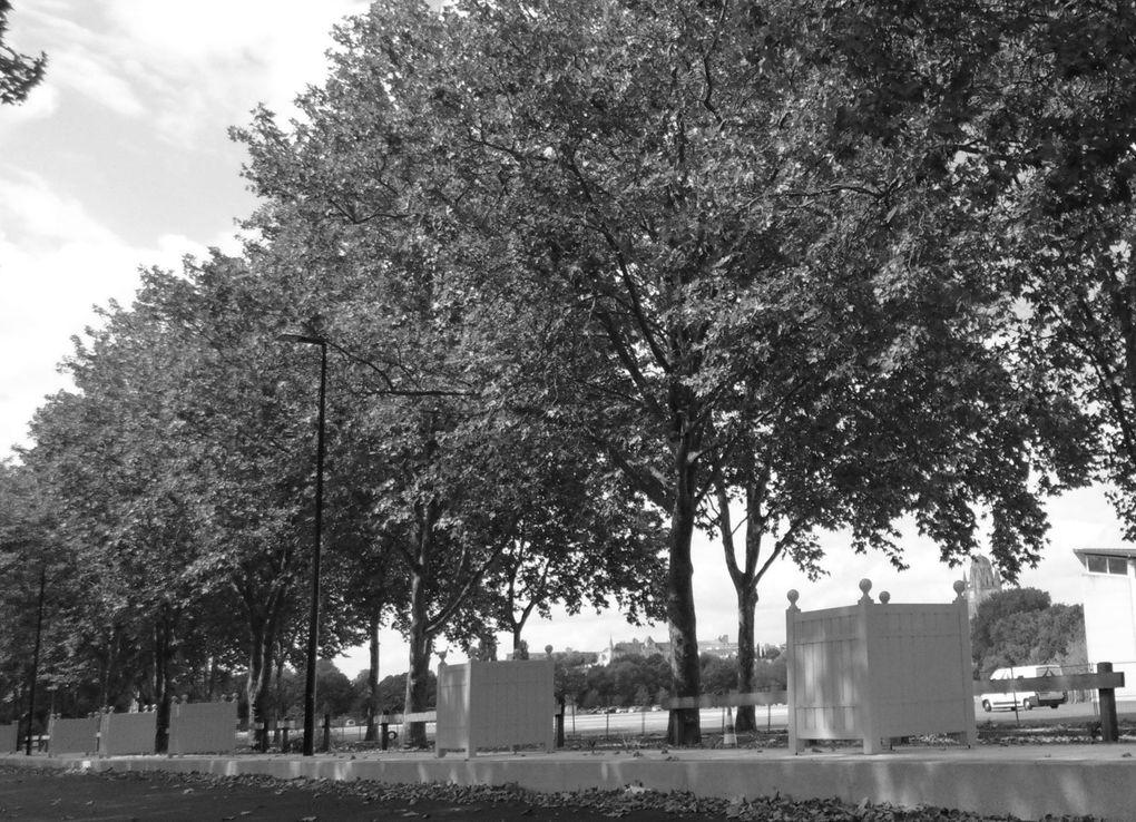 Et quand on parle de travaux sur cette avenue on pense aux grandes perturbations de notre circulation. Mais quan était-il avant l'existence de ce pont et au temps des grandes inondations. Visions via des cartes postales, l'une d'entre-elles nous montrent une rue encore très peu utilisée, la rue de la boule.