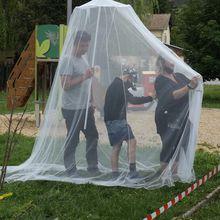 Barrême visite décalée dans le monde des moustiques