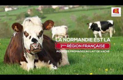LES 4 FROMAGES AOP DE NORMANDIE