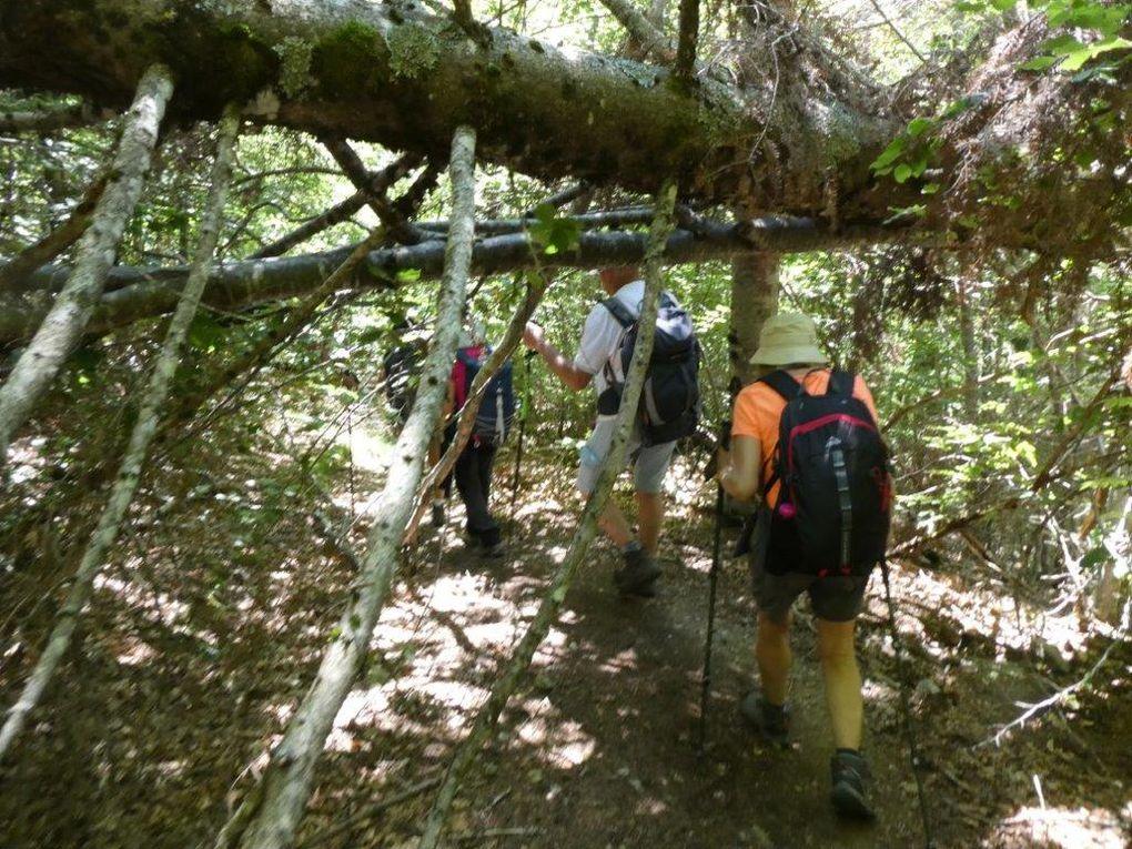 Quelques photos de la randonnée du Dimanche 11 Juillet L'AIGOUAL - LA VALLEE DU BONHEUR Animateur José et photos Annie.