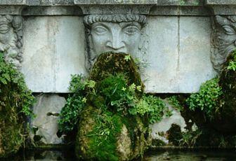 Scène de rue - La fontaine végétale