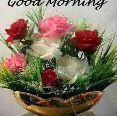 GOOD MORNING, TODAY PRAY TO YOUR PROBLEMS....