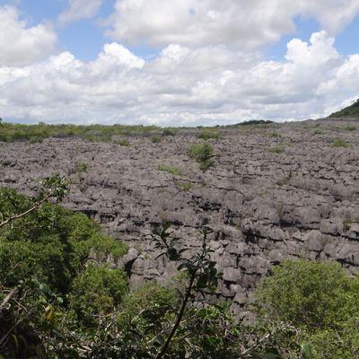 les tsingy de l'Ankarana au nord de Madagascar