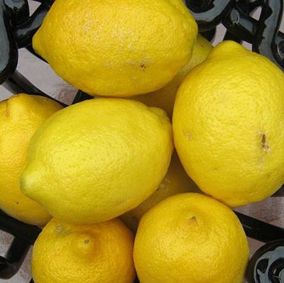 When Life Gives You Lemons, Use Them in These 14 Amazing Ways.