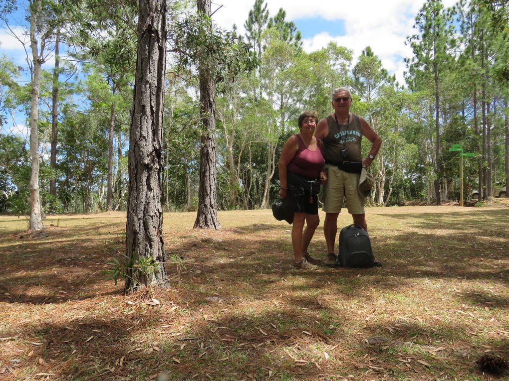 Saga Néo-Calédonienne........ Derniers jours sur le ''caillou'' : Le parc des grandes Fougères, puis Nouméa .....puis encore Nouméa