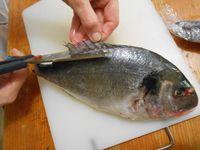 Habiller des poissons