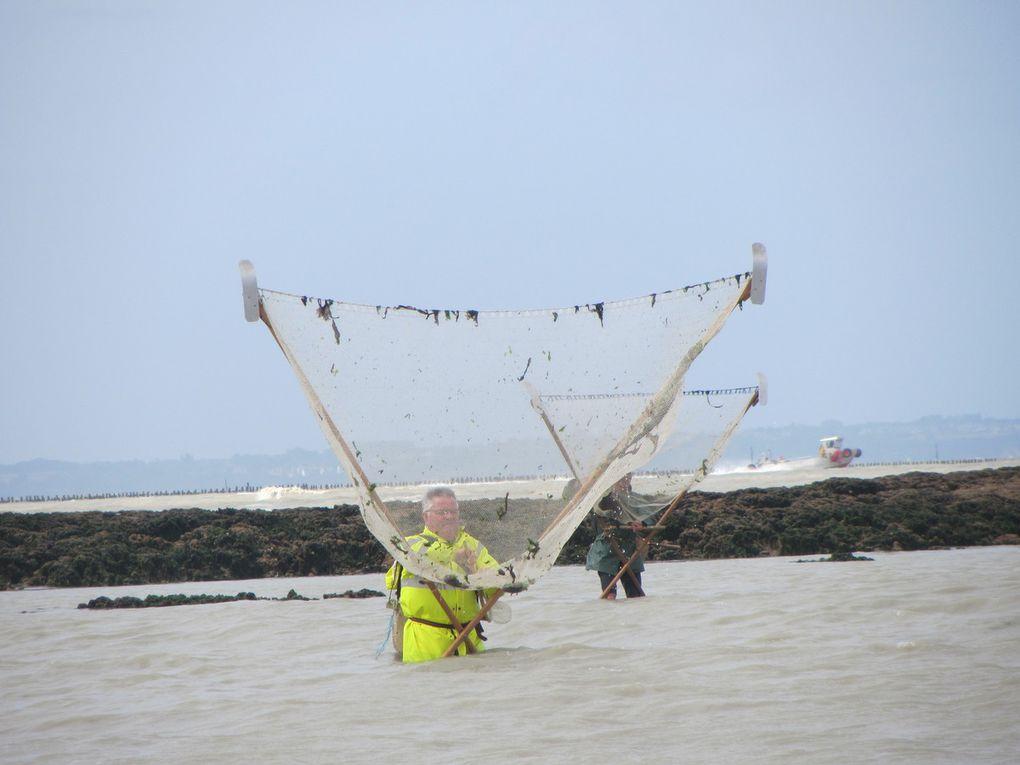 Scènes de pêche ... Diaporama