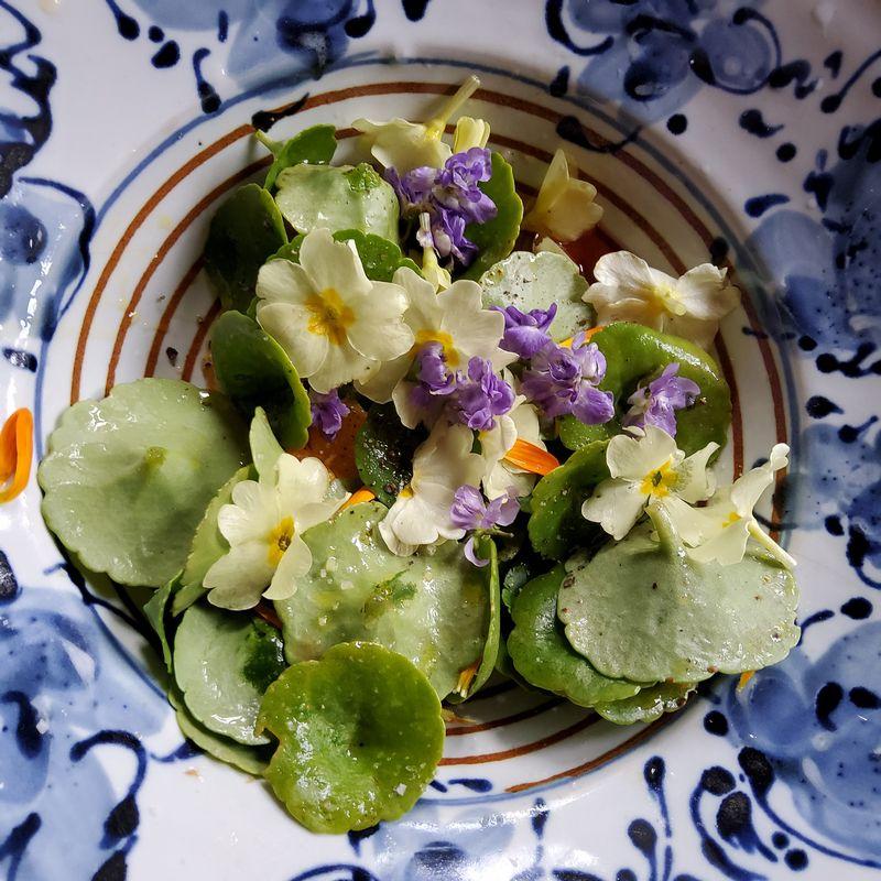 Salade de pré-printemps