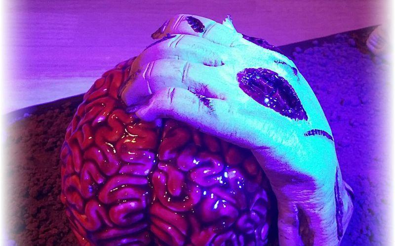 Brain Cake - Zombie Cake - Spécial Halloween