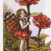 Girl with poppies photo stitch free embroidery design