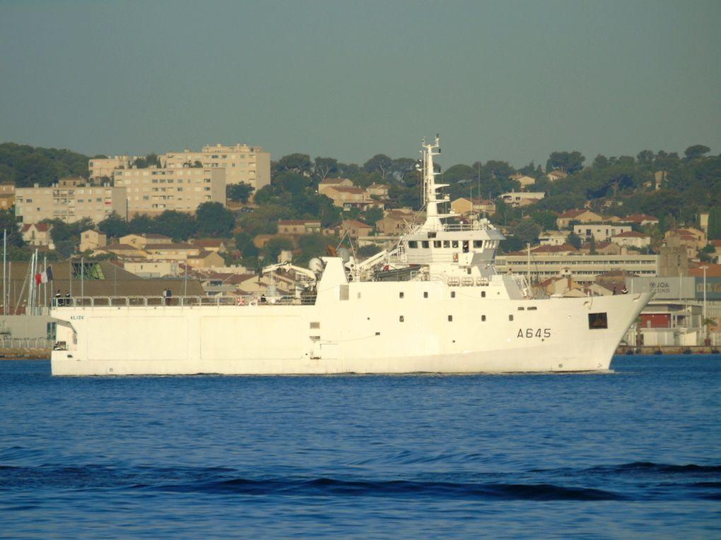 ALIZE  , A645  , batiment de soutien à la plongée arrivant à Toulon le 12 juillet 2017