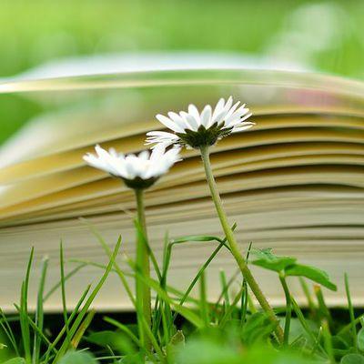 Blanquer teste un manuel de lecture officiel: vers une caporalisation des enseignants?