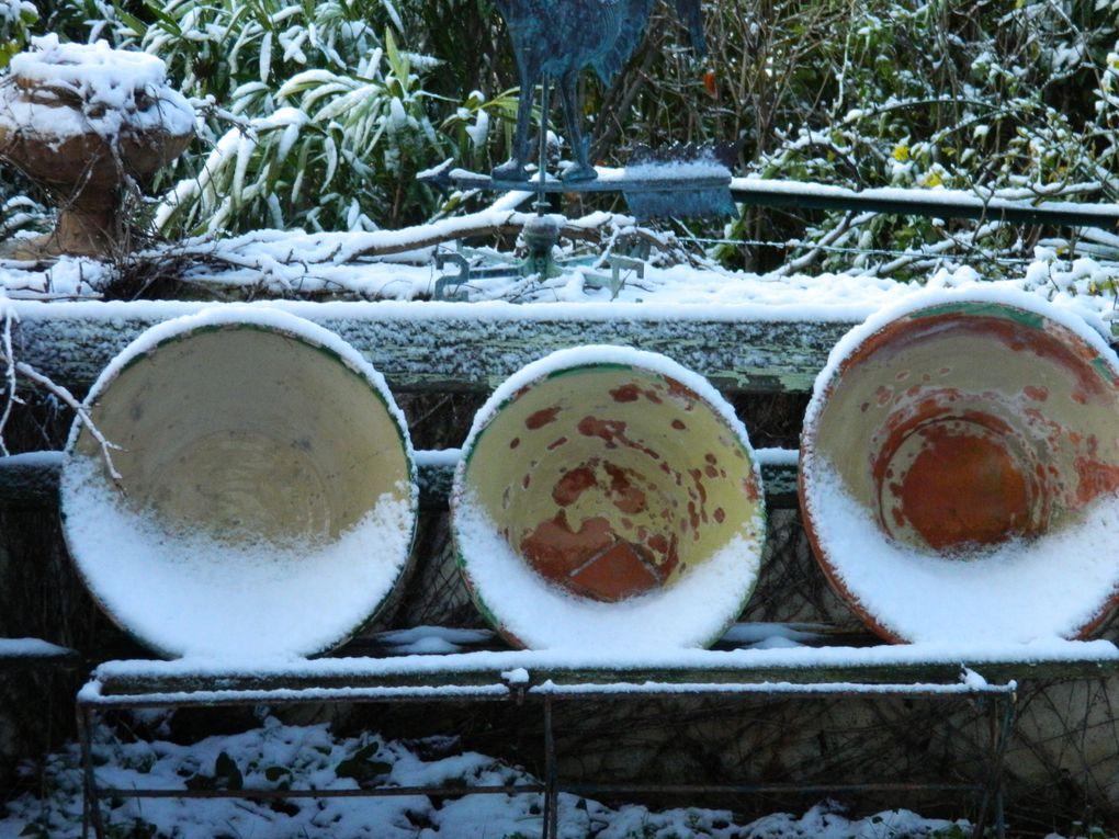 Album - neige-janv-2012