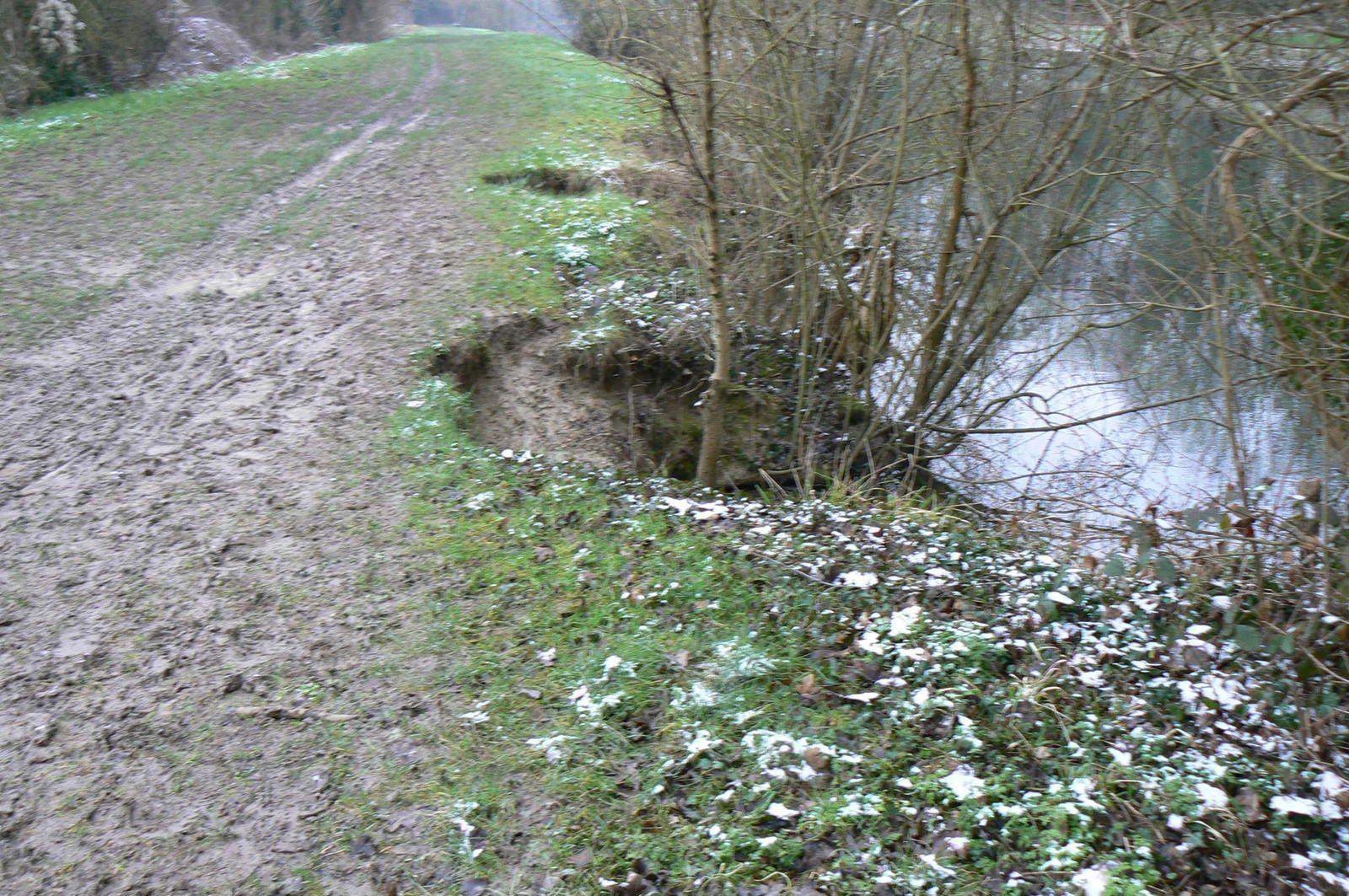 8.2.2021 ESBLY au bord du Canal de Chalifert rive droite : inondations et effondrement de la berge