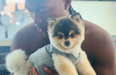 UFABET แทงบอลให้รวย 'หริด'โพสต์ไอจีวอนช่วยตามหาหมาหลังถูกขโมยขึ้นบ้าน