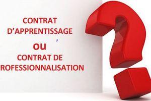 Alternance: les différences entre les contrats d'apprentissage et de professionnalisation