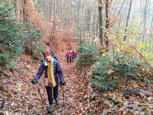 C'était le 28 novembre, de Wihr-au-Val à Labaroche, avec les randonneurs