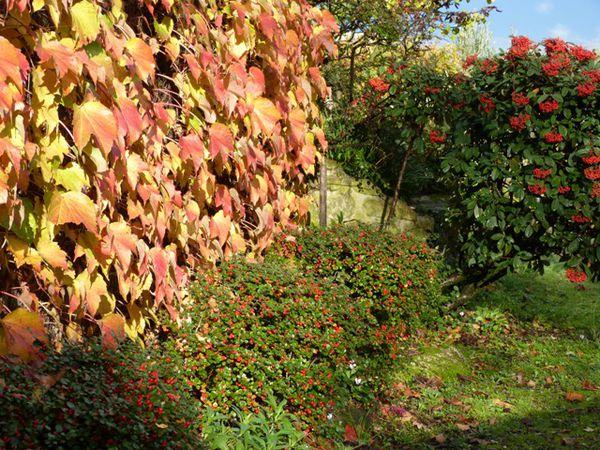 images de l'automne à Chatuzange le Goubet