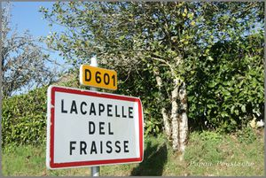 Lacapelle Del Fraisse Cantal