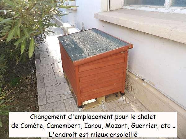 """Quelques modifications indispensables """"chez Comète"""""""