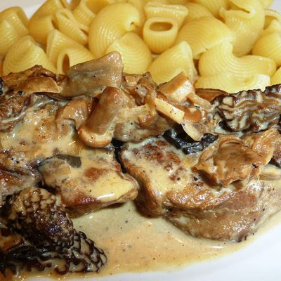 Pork filet with cream and morel sauce
