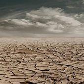 L'acqua potrebbe essere l'oro del futuro - newsalternative