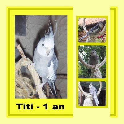 1er Anniversaire de Titi