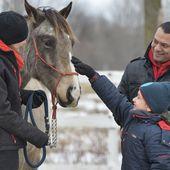 Une thérapie par l'équitation -