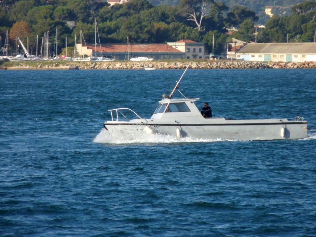 BNT 17 , vedette de surveillance de la rade et du port  . (BNT : Base Navale Toulon)
