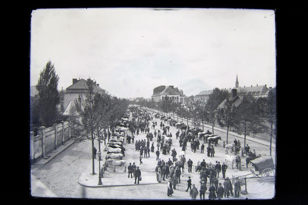 Photographie de Joseph Quentin, Musée des Beaux-Arts d'Arras.