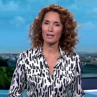 Motif animal pour Marie-Sophie Lacarrau - 13H - 04-10-2019