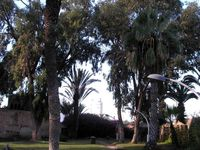Agadir Noël 2019