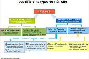Quelle mémoire travailler ?