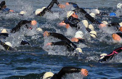 Banc de nageurs