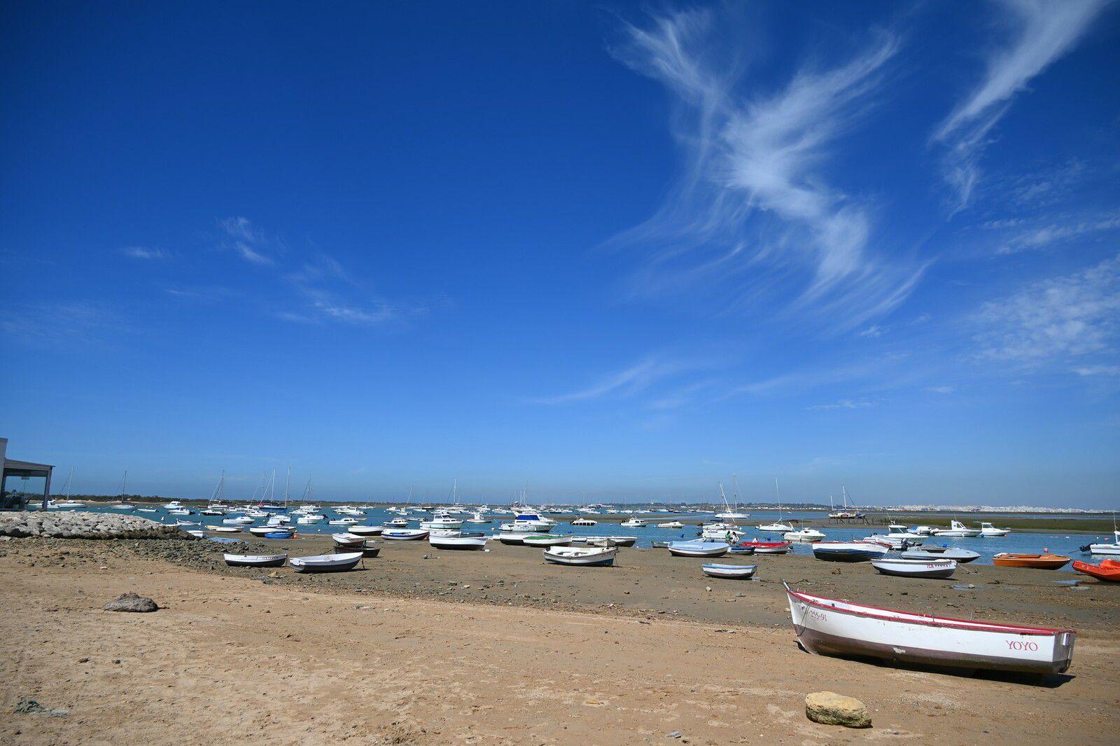 Andalousie 2021 : le petit port de Sancti Petri ...