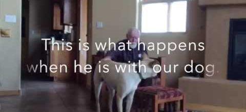 Le vieux monsieur, Alzheimer et le chien