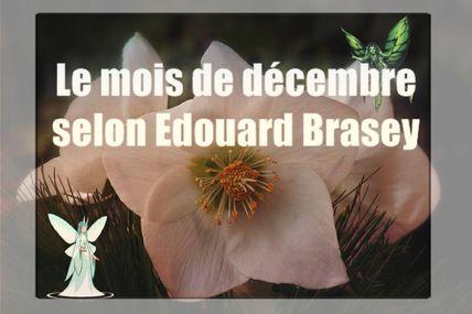 Le mois de décembre selon Edouard Brasey