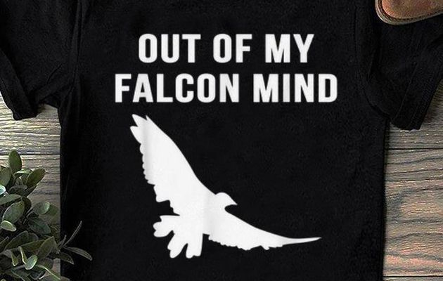 Original Out Of My Falcon Mind shirt