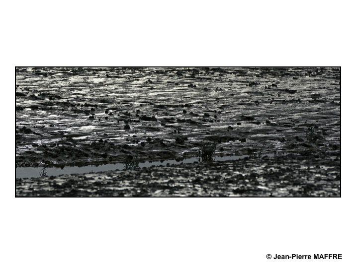 Eau, terre, le mélange des deux donne parfois des résultats saisissants. Qui pourrait croire que les photos ont été prises dans des marais du Mont Saint-Michel ?