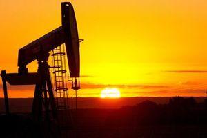 Le pétrole rend l'économie folle