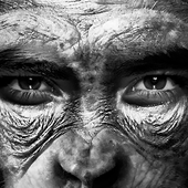 It's Time to Make Human-Chimp Hybrids - Issue 58: Self - Nautilus