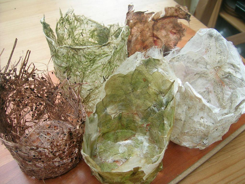 papier vegetal en volume