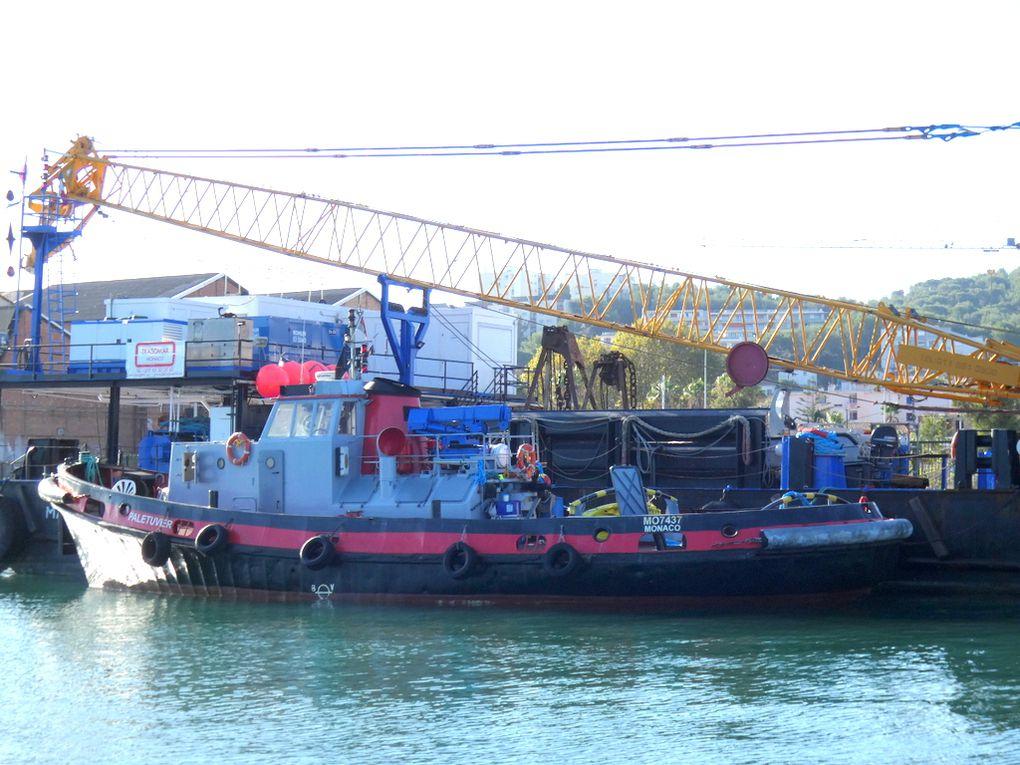 PALETUVIER , remorqueur , a quai à la Seyne sur Mer le 29 septembre 2019