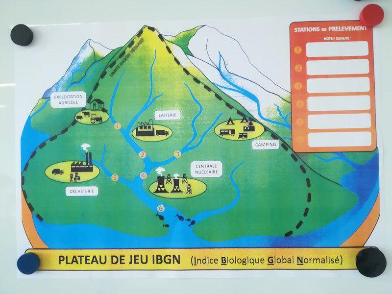 A la découverte des zones humides de Garonne