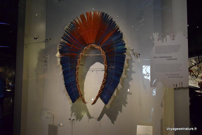 Le Musée des confluences à Lyon (69)