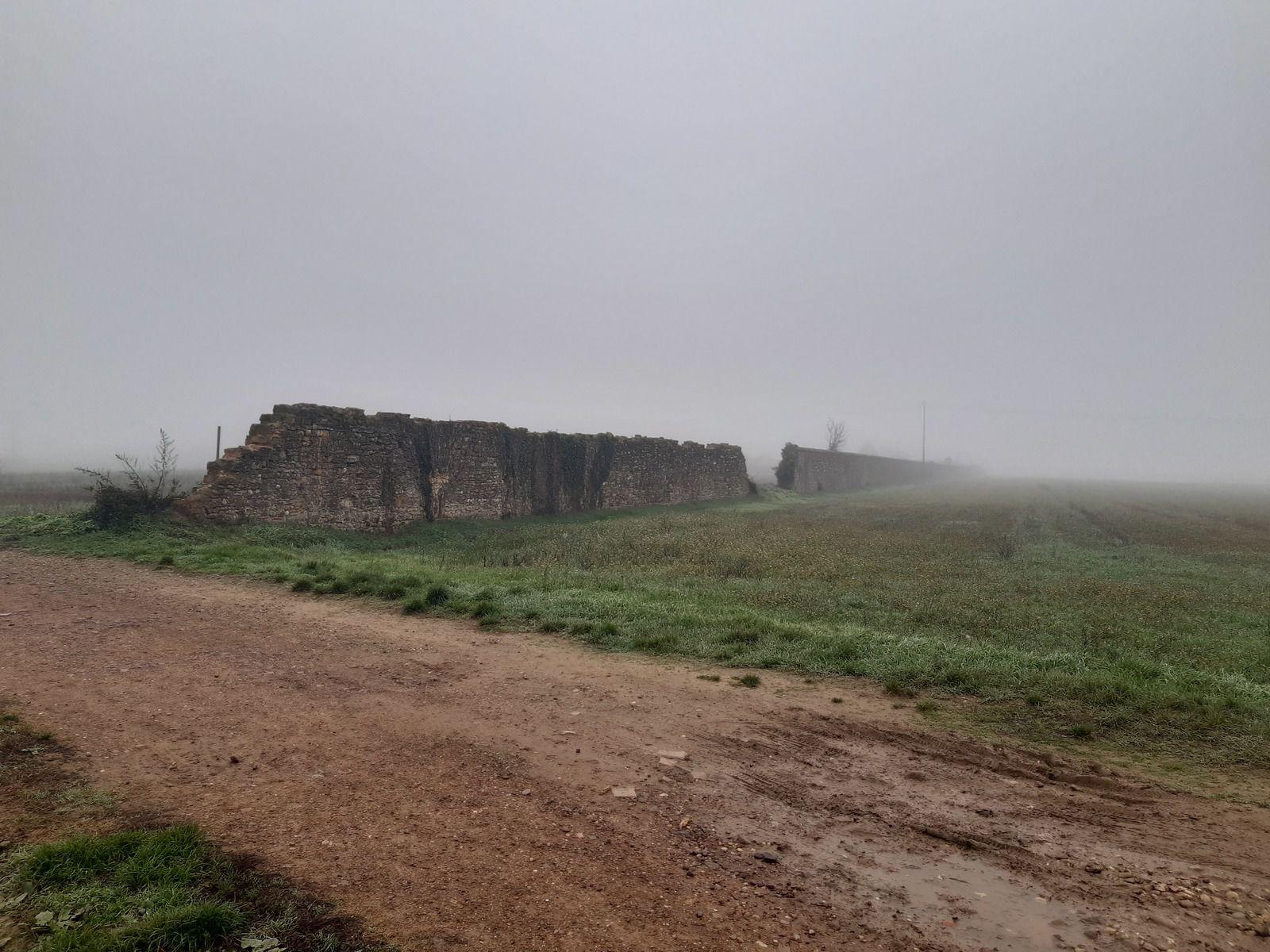 Brouillard et mystère
